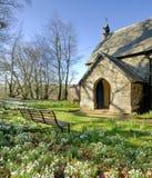 Snowdrops in un churchyard Immagini Stock