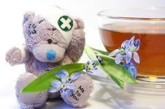 Snowdrops, urso e um copo do chá Fotografia de Stock
