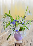 Snowdrops in vase on old wood Royalty Free Stock Photo
