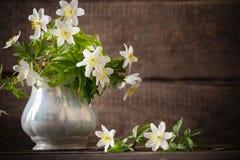 Snowdrops in vase royalty free stock photos