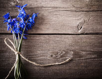 Snowdrops on wooden background Royalty Free Stock Photography