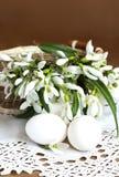 Snowdrops y huevos Foto de archivo libre de regalías
