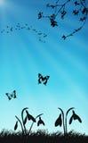 Snowdrops y mariposas en tiempo de resorte libre illustration