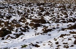 Snowed agriculture arable land realistic winter colored. Snowed agriculture arable land photo design realistic winter colored Royalty Free Stock Photos