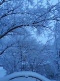 Snowed2 Royalty Free Stock Image