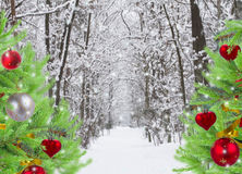 Snowed forest with decorated evergreen trees Royalty Free Stock Image