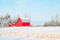 Fantastic Morning Landscape With Fresh Snow. It snowed over night than cleared in the morning. Leaving this beautiful winter scene with fresh crisp scene Stock Images