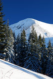 Snowed peak in Carpathian mountains stock photography