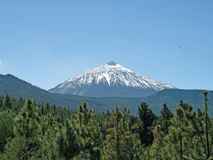 snowed teide royaltyfria foton