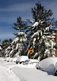 Snowed wewnątrz w Północnym Virginia Zdjęcie Royalty Free