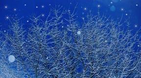 snowfall Fotografia Stock Libera da Diritti