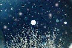 snowfall Fotografie Stock Libere da Diritti