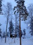 snowfall immagine stock