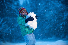 snowfall Photos stock