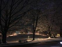 snowfall zdjęcia royalty free