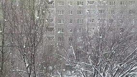 snowfall video estoque