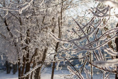 Snowfall background Royalty Free Stock Images