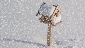 Snowfall on bird box stock video footage