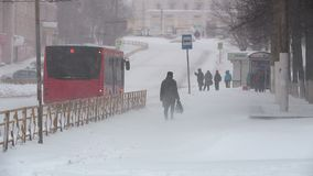 Snowfall in the city. Heavy snowfall in the city snowstorm drifts transport collapse stock video