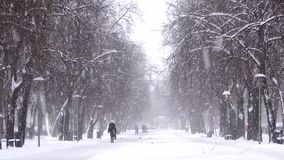Snowfall in the city, people walking on snowy road. Blizzard, snowstorm. 1 stock video