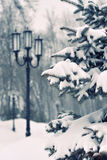 Snowfall in the city Royalty Free Stock Photography