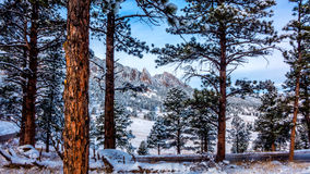After a snowfall Royalty Free Stock Photography