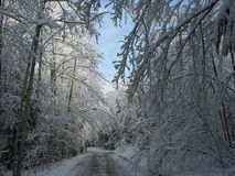 Snowfall on cottage road stock photography