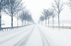 Snowfall on a country road Royalty Free Stock Image