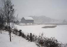 Snowfall in the country on a afternoon royalty free stock image