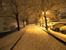 Snowfall in the evening Royalty Free Stock Photos