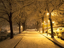 Snowfall in the evening Royalty Free Stock Photography