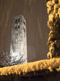 Snowfall in the evening Stock Image
