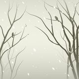 Snowfall in the forest. Trees silhouettes against mantle of snow Stock Photography
