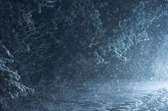 Snowfall in the forest at night. The road covered with snow. New Year eve. Horizontal photo Stock Images