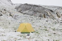 Snowfall i bergen Arkivfoton