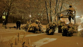 Snowfall i parkera Arkivfoto