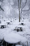 Snowfall in Istanbul Royalty Free Stock Photography