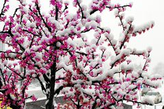 Snowfall on the LED artificial light tree Royalty Free Stock Photos