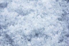 Snowfall Macro. Macro of fresh snowfall, the individual snowflakes can be easily seen and makes a good background Stock Photos