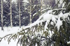 Snowfall in Moscow, Russia. Russian winter. Royalty Free Stock Photos