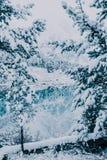 Snowfall on the mountain lake royalty free stock photography