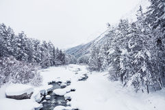 Snowfall on the mountain river Royalty Free Stock Images
