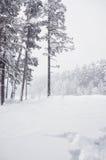 Snowfall on the mountain river. Stock Photo