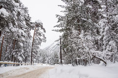 Snowfall on the mountain road Stock Images