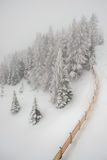 Snowfall in mountain winter forest Royalty Free Stock Images