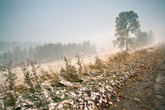 Snowfall in mountains. Change of seasons. Winter coming. Carpath Royalty Free Stock Photo