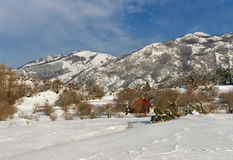 After a snowfall in the mountains. Montenegro Royalty Free Stock Image