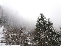 Snowfall in Mushkpuri, KPK, Abbotabad royalty free stock photo