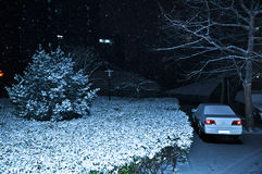 The snowfall in night Stock Photography