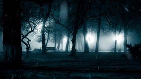 Snowfall in night park stock footage